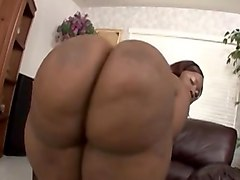 Ebony, Ass, Xhamster.com