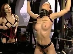 Bdsm, Domination, Gotporn.com